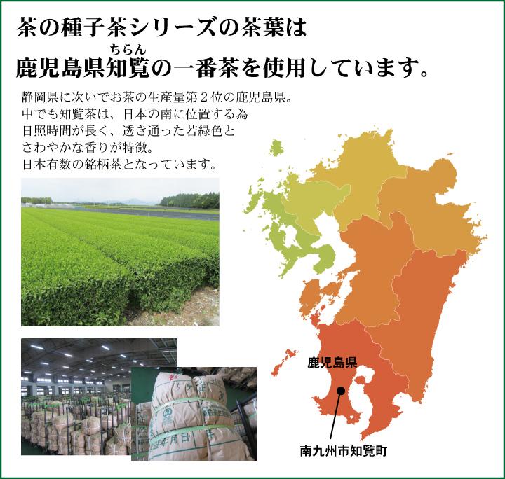 茶葉の生産地